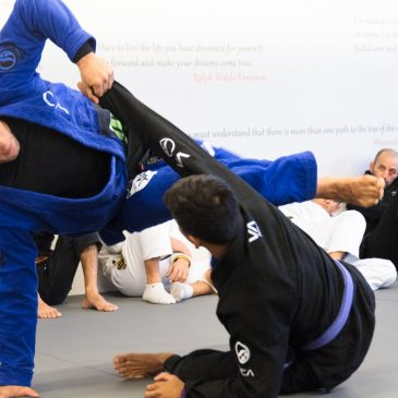 Buchecha guard pass